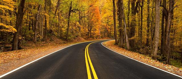 rural-road-981757_640